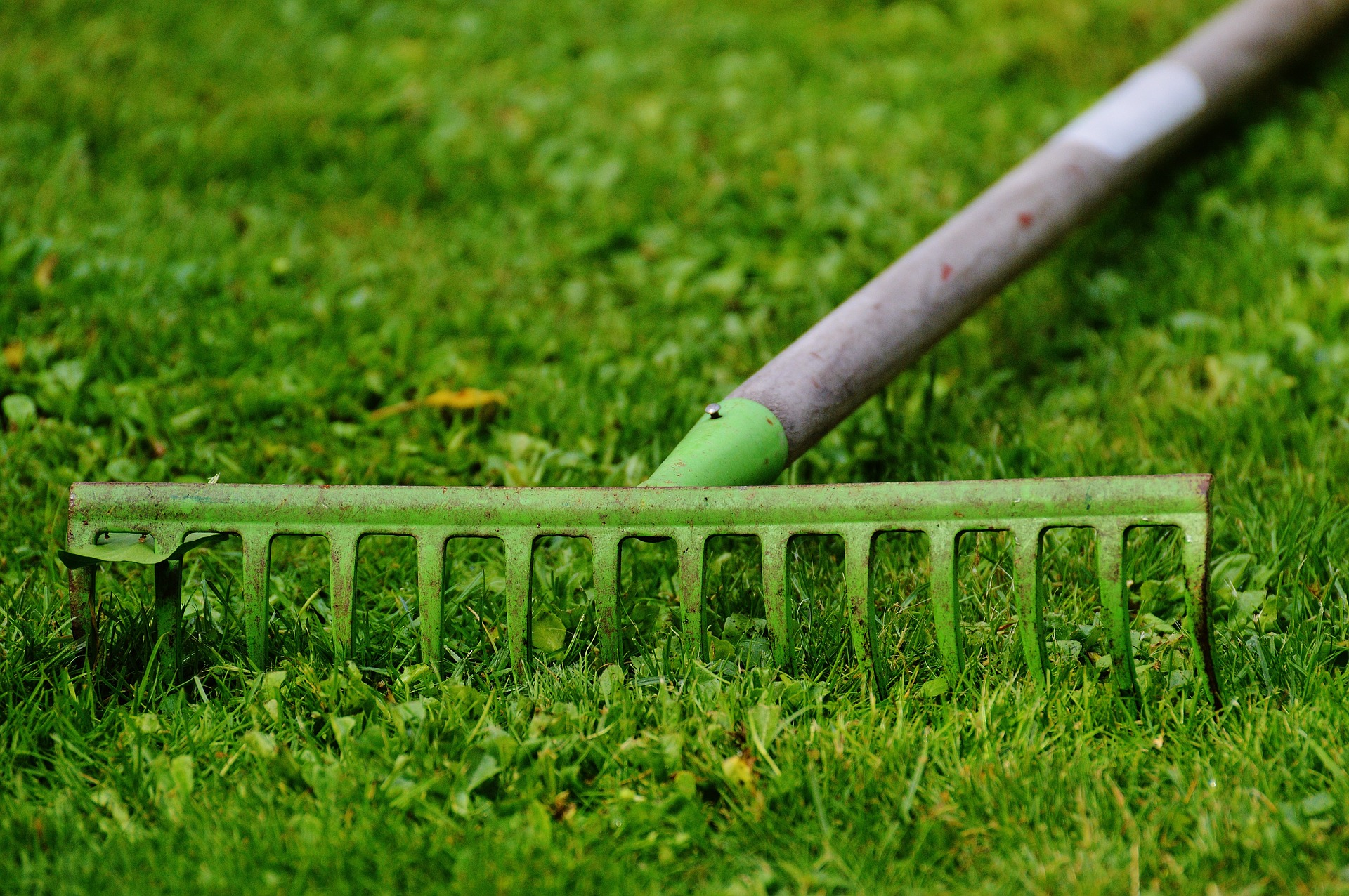 Aerating the Lawn Soil