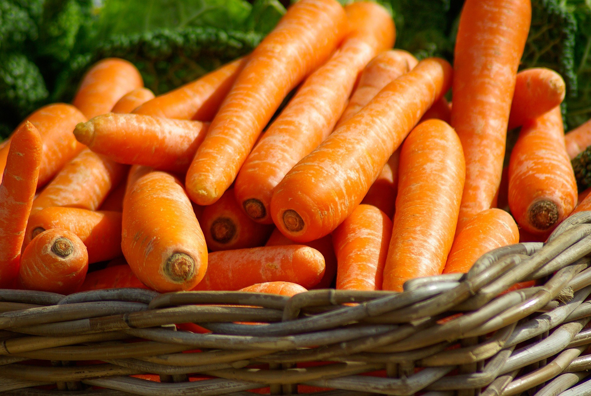 Store Carrots