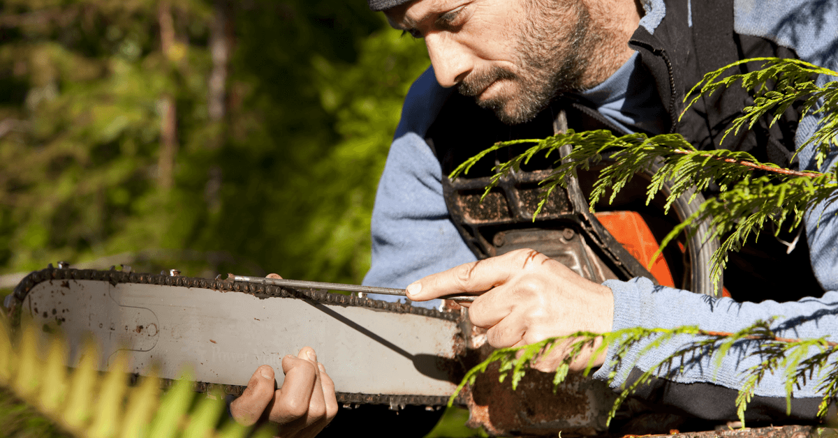 best-chainsaw-sharpener