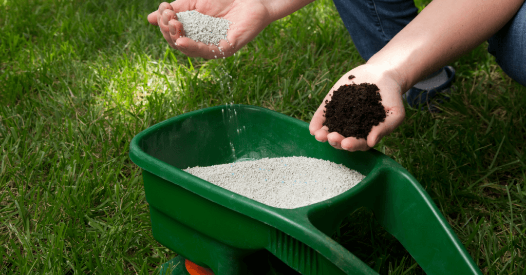 best-lawn-fertilizer-reviews
