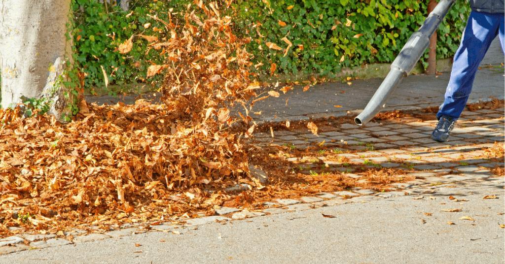 best-leaf-vacuum-mulcher