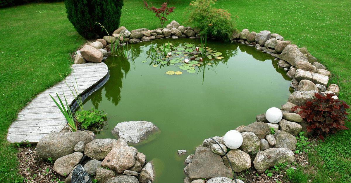 best-pond-filter