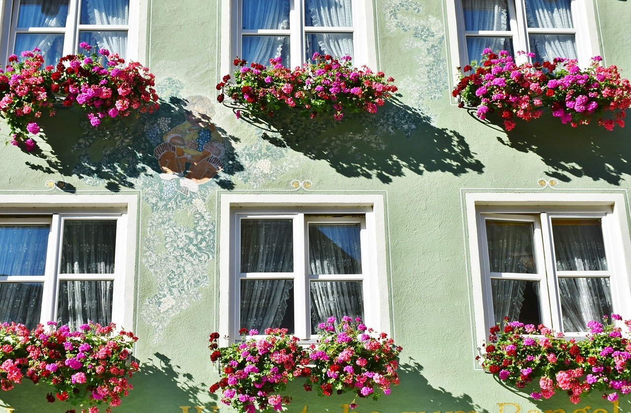 Flower Window Box