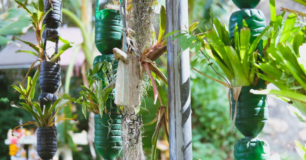 reasons-to-start-vertical-gardening