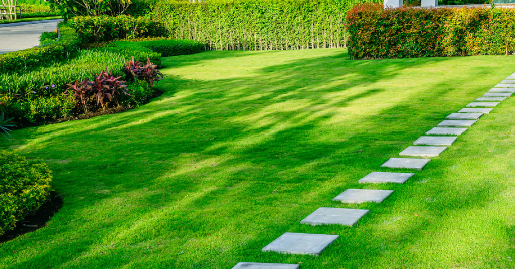 perfect-the-look-of-your-summer-lawn