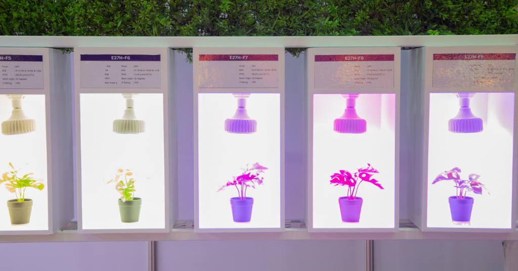 led-lights-to-grow-plants