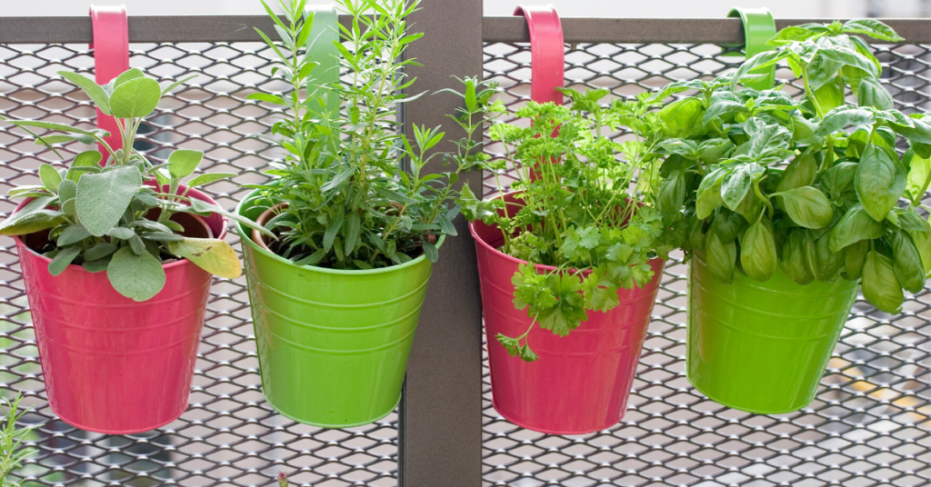 how-to-convert-your-home's-extra-space-into-a-personal-garden