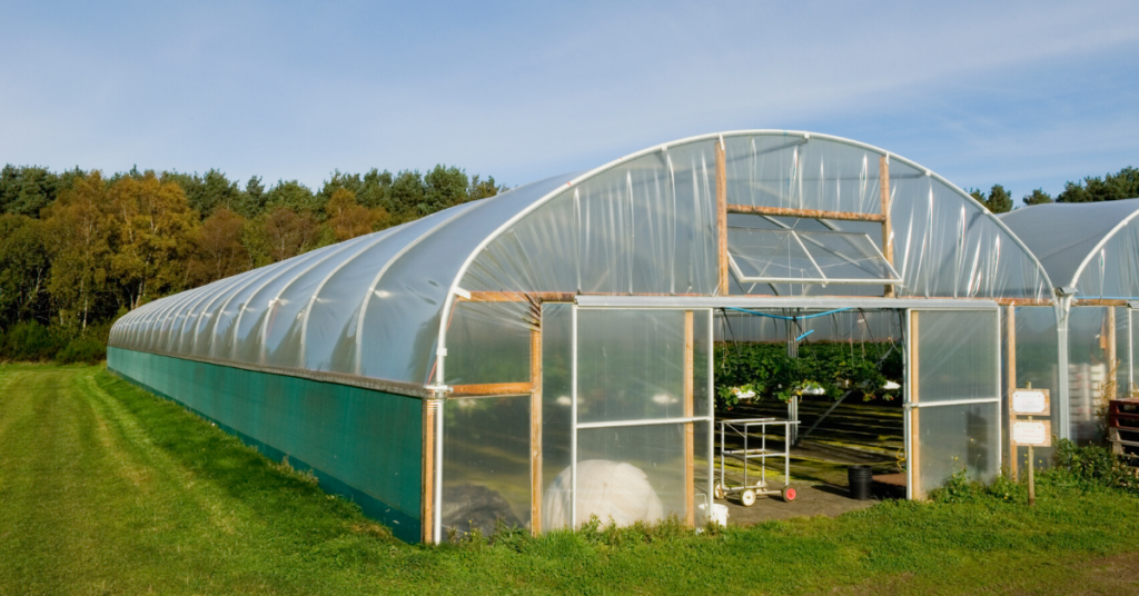 benefits-of-a-cloche-for-growing-your-own-vegetables