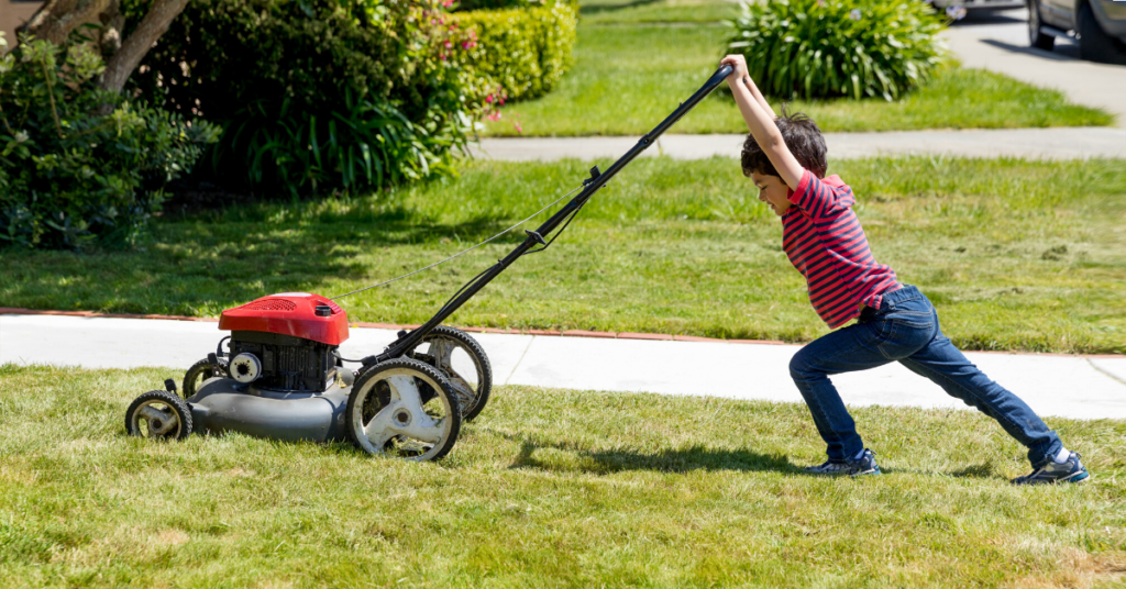 maximize-your-lawn-care-routine