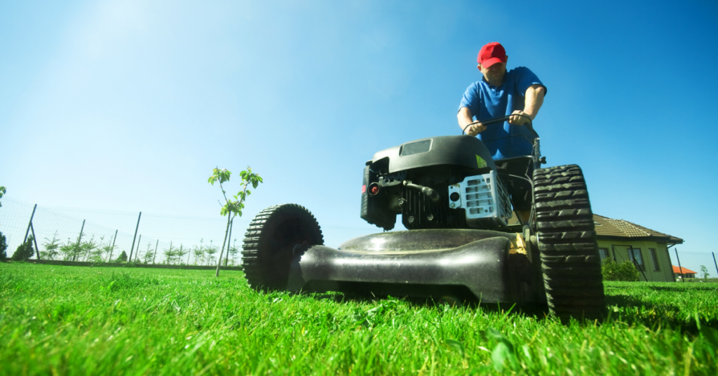 lawn-care-service