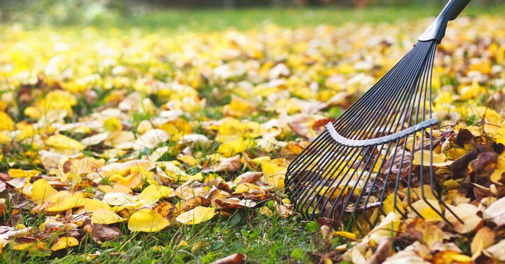 prepare-your-garden-for-a-winter-sleep