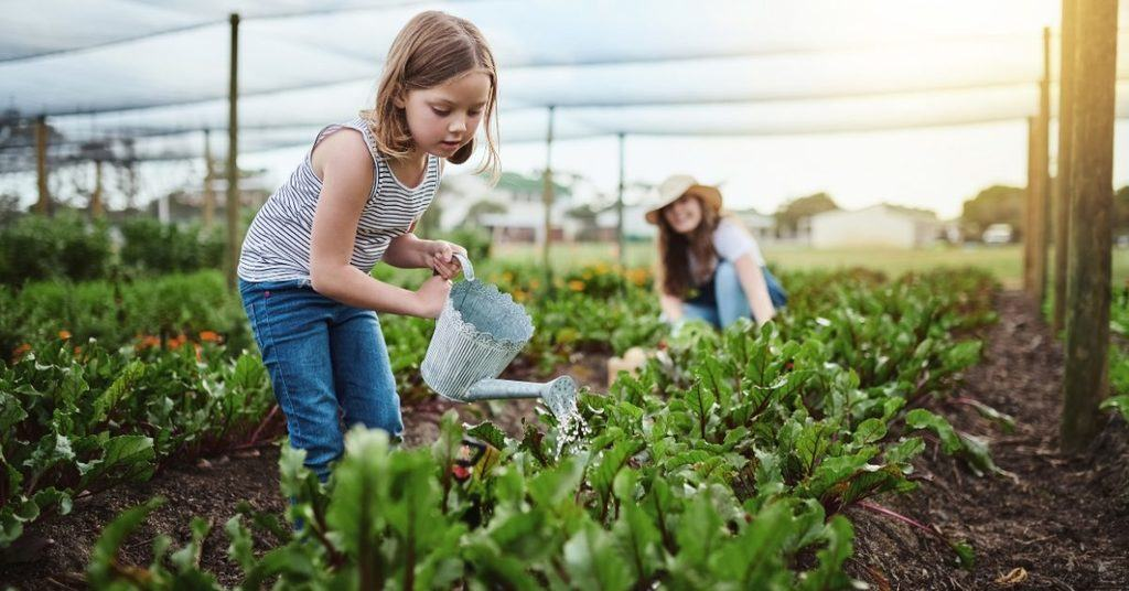 the-importance-of-sustainable-farming