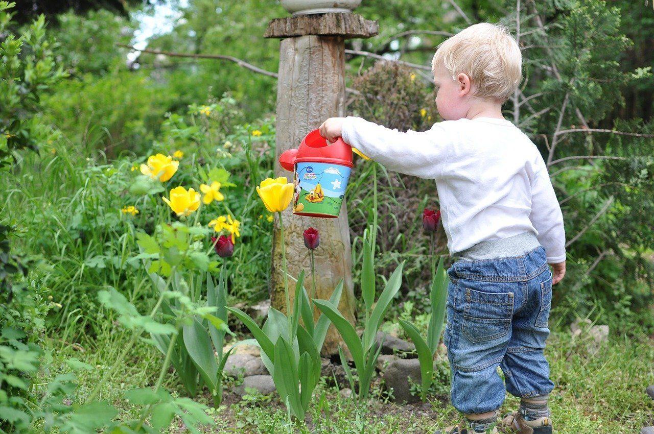watering-flower