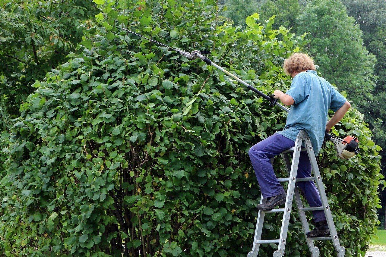 landscape-gardener